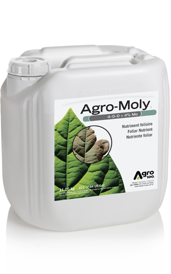 Agro-Moly